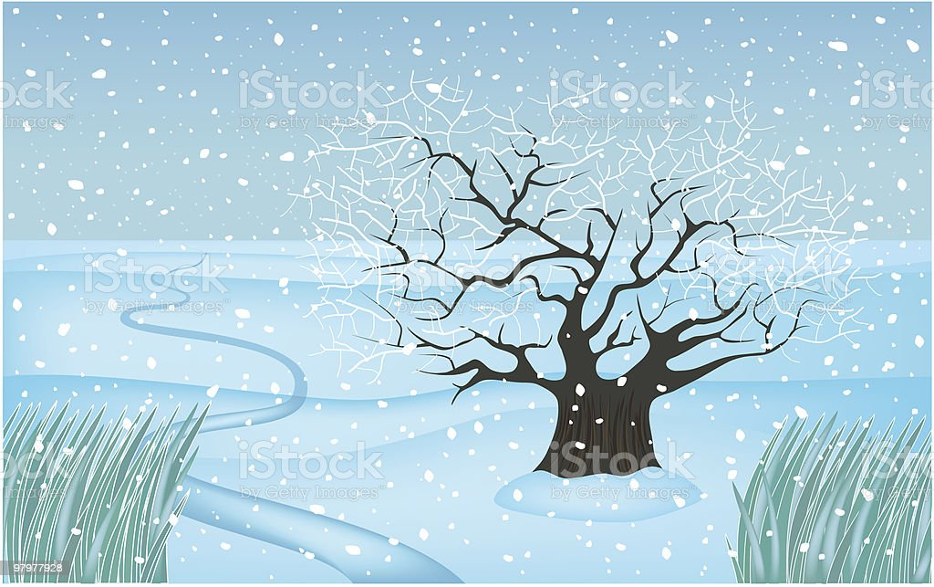 winter tree royalty-free winter tree stock vector art & more images of beauty in nature
