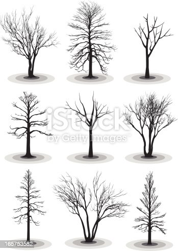Dead or winter trees silhouettes (highly detailed)