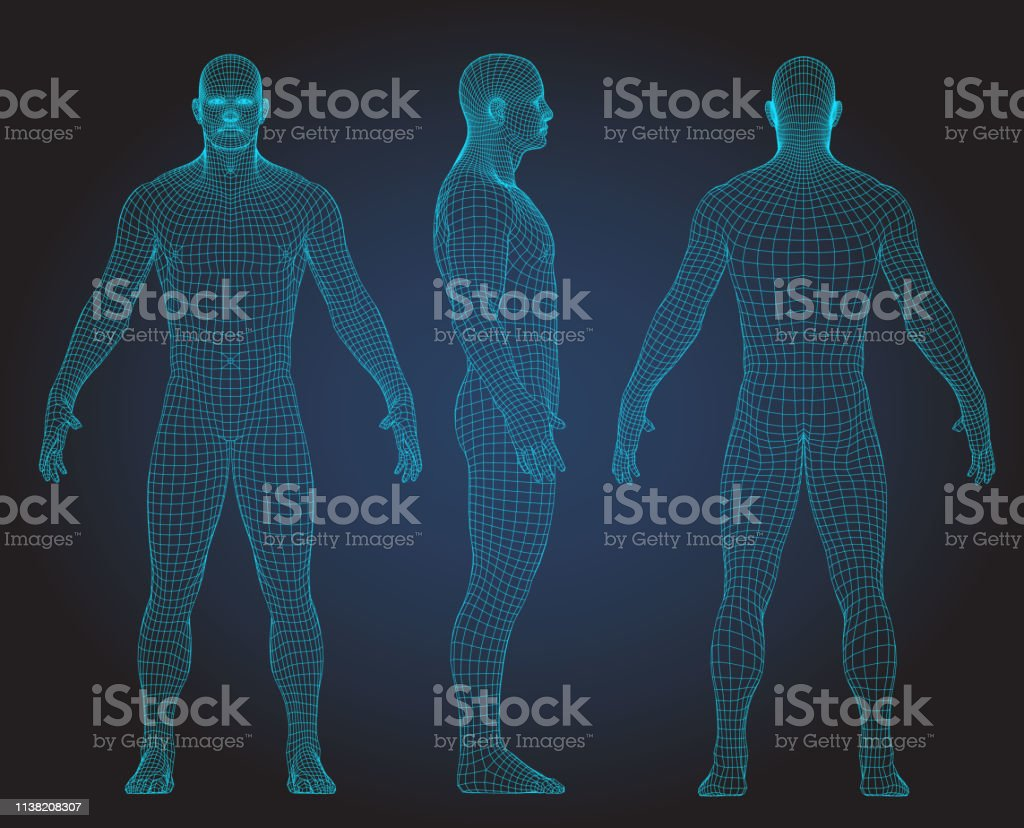 3d Wire Frame Human Body Polygonal Low Poly Stock