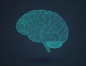 3D wireframe brain in side view on dark BG