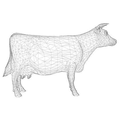 Wireframe of a cow from black lines on a white background. Side view. 3D. Vector illustration