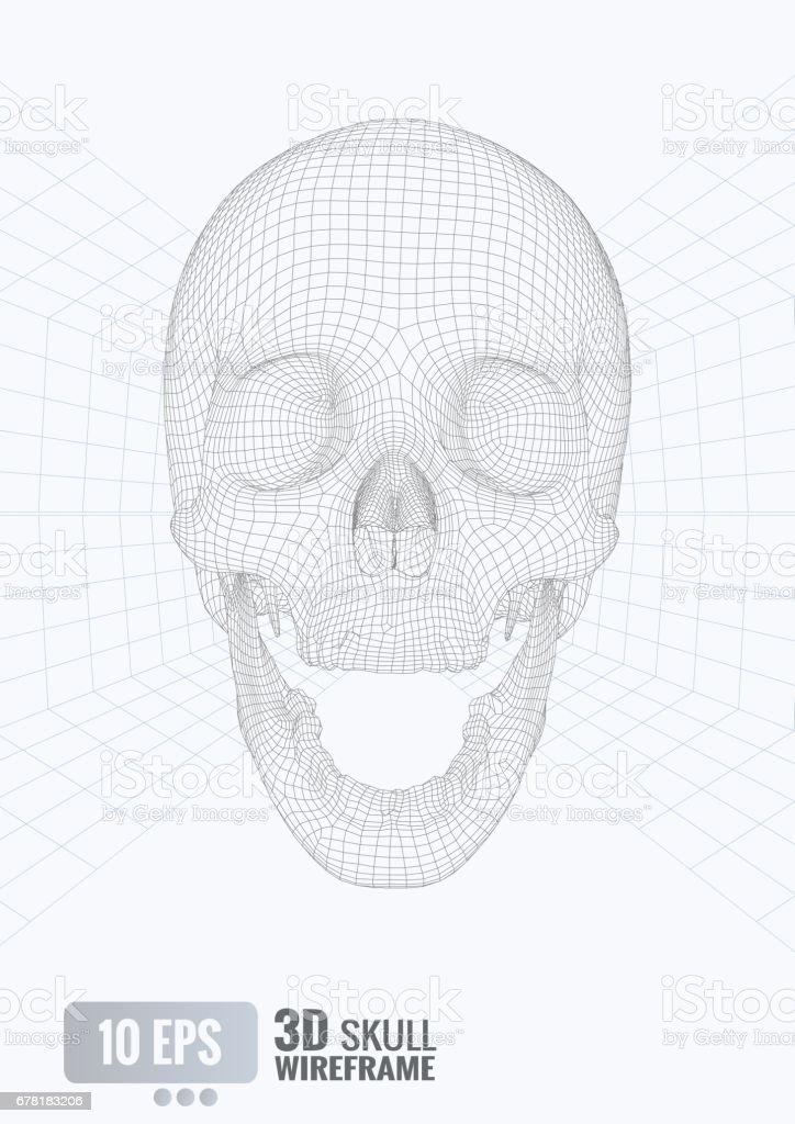 3d Wireframe Skull Front View On White Bg Stock Vector Art & More ...