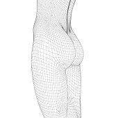Wireframe slim waist sports girl with magnificent booty. Polygonal figure of a girl. 3D. Vector illustration