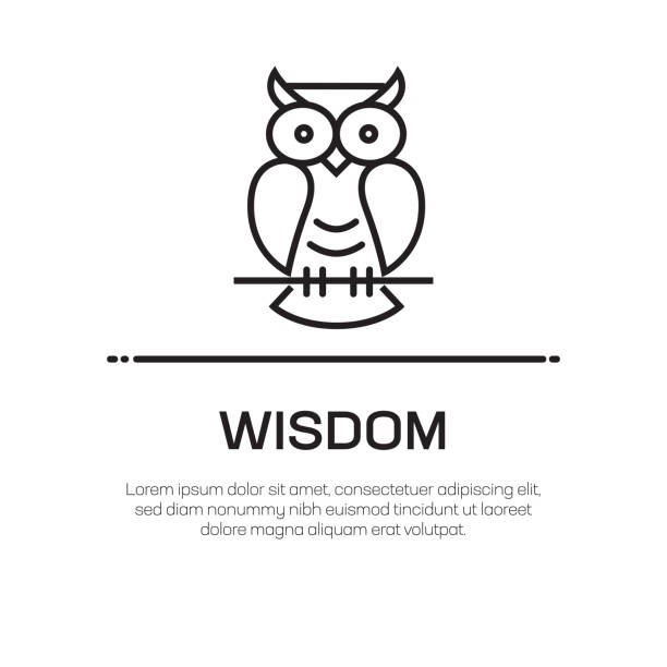 wisdom vector line icon - simple thin line icon, premium quality design element - sowa stock illustrations