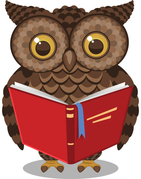 wise intelligent standing owl reading a book - great horned owl stock illustrations, clip art, cartoons, & icons
