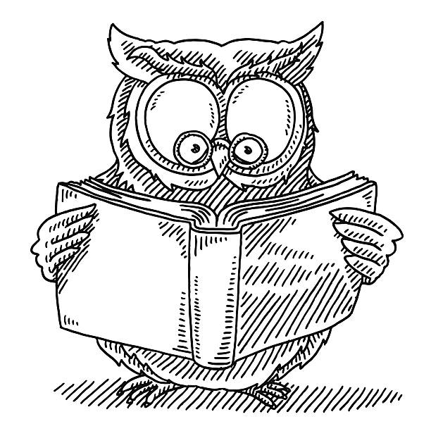 wise owl reading book drawing - black and white owl stock illustrations, clip art, cartoons, & icons