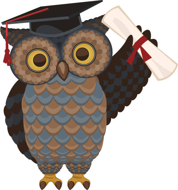 wise owl standing with diploma and hat - great horned owl stock illustrations, clip art, cartoons, & icons