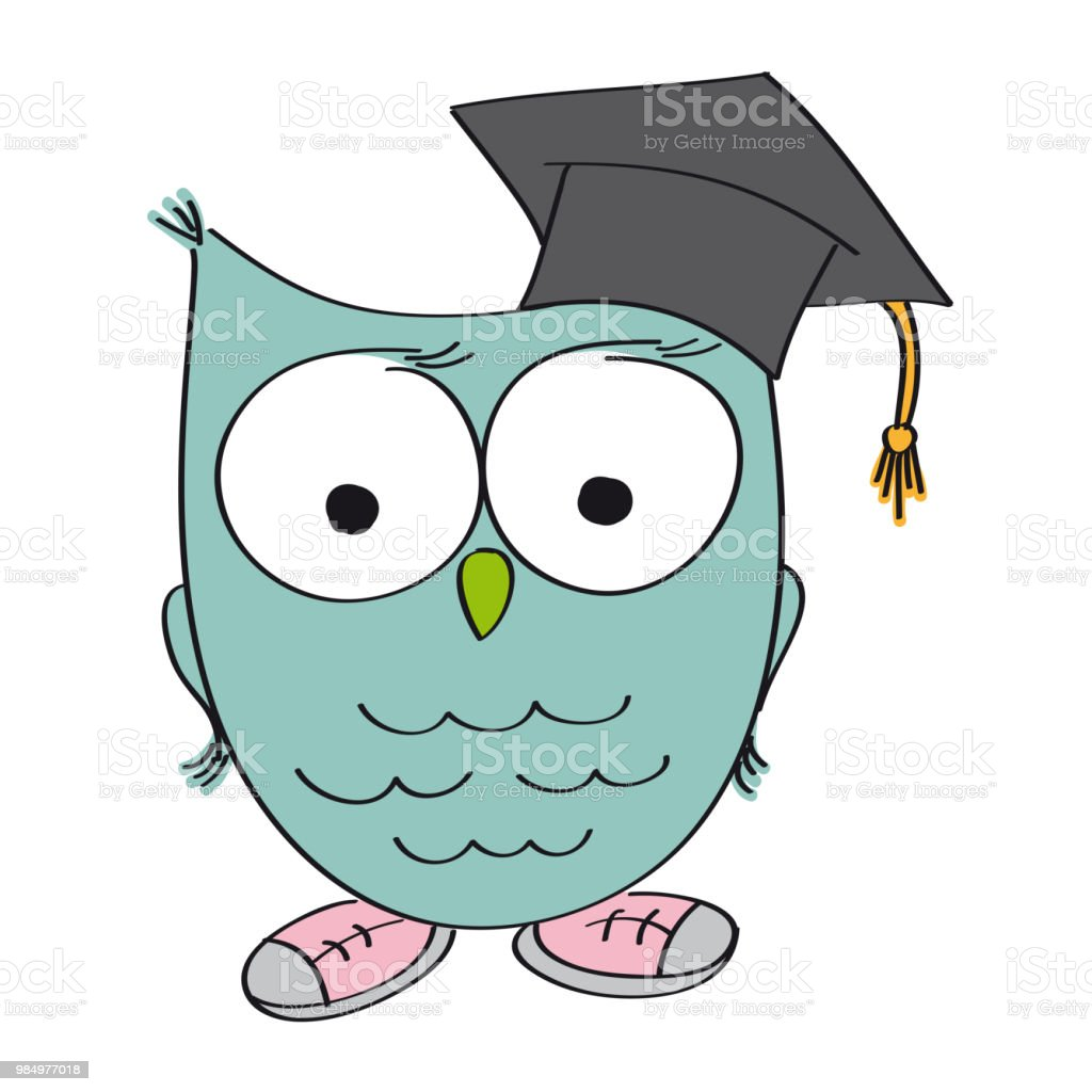 wise owl with graduation cap on the head the bird is wearing shoes