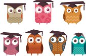 A group of owls, wearing mortar boards.