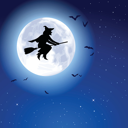 Witch Fly Moon