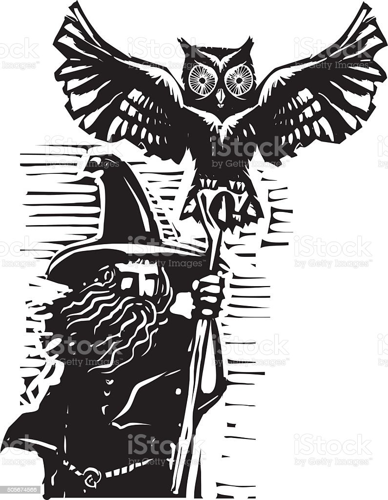Wizard with Owl vector art illustration