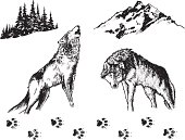 Hand drawn wolves and related nature elements.
