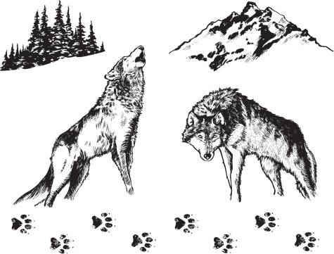 Wolf - Graphic Elements