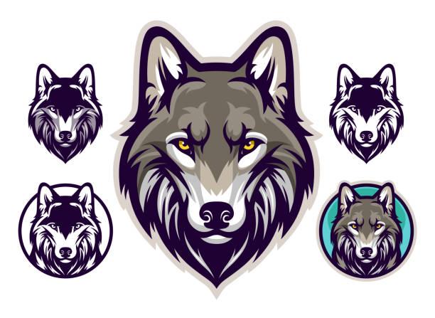 bildbanksillustrationer, clip art samt tecknat material och ikoner med wolf head emblem - varg