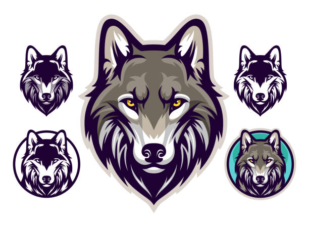 illustrazioni stock, clip art, cartoni animati e icone di tendenza di wolf head emblem - lupo