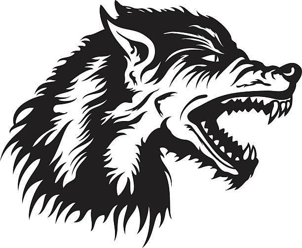 Wolf head emblem Illustration a roaring wolf head emblem for a team or a logo werewolf stock illustrations