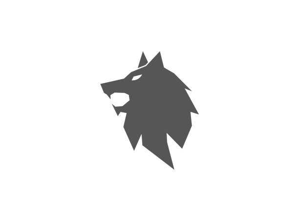 Wolf head open mouth fox face illustration design Wolf head open mouth fox face illustration design silhouette of a howling coyote stock illustrations