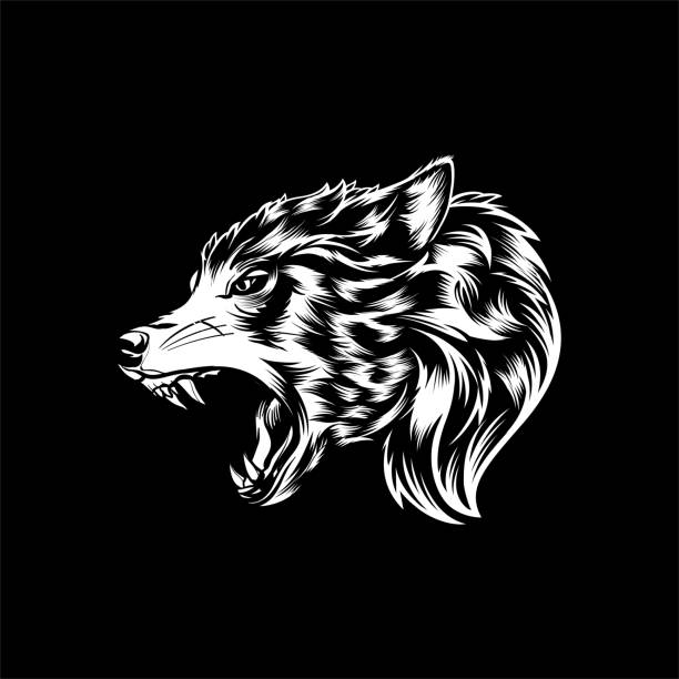 Wolf Head Vector Animal Vector Illustration silhouette of a howling coyote stock illustrations