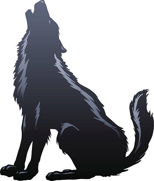 Wolf Howling Silhouette Wolf Howling Silhouette. Major elements layered separately. 2 spot colors plus black. Simple gradients and shapes for easy printing, separating and color changes. File formats: EPS and JPG silhouette of a howling coyote stock illustrations