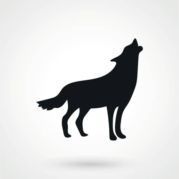 wolf icon wolf icon silhouette of a howling coyote stock illustrations