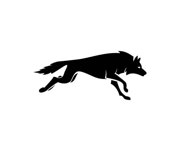 bildbanksillustrationer, clip art samt tecknat material och ikoner med wolf-ikonen - varg