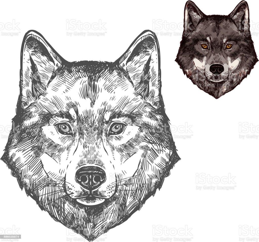 Animal de bosquejo aislado lobo boca vector ilustración de animal de bosquejo aislado lobo boca vector y más vectores libres de derechos de animal libre de derechos