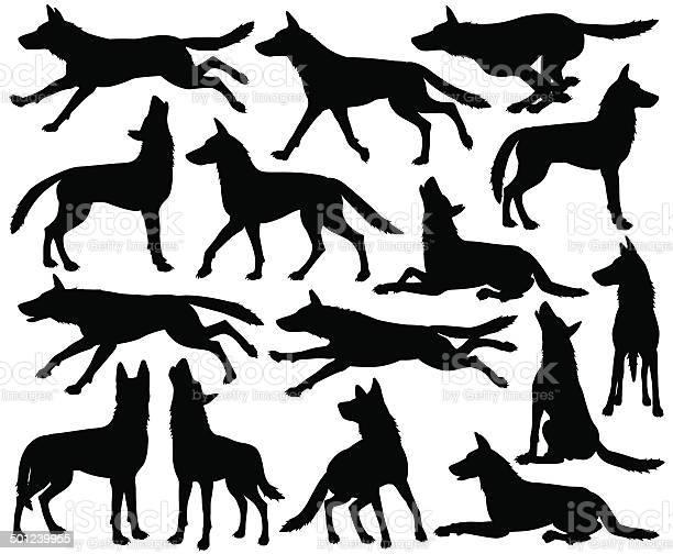 Wolf silhouettes vector id501239955?b=1&k=6&m=501239955&s=612x612&h=ng1yo4dw28nj5ukhc3pgumjdx55iwkx pjf9e398ajw=