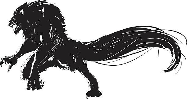 wolf Hand drawn vector wolf man. werewolf stock illustrations