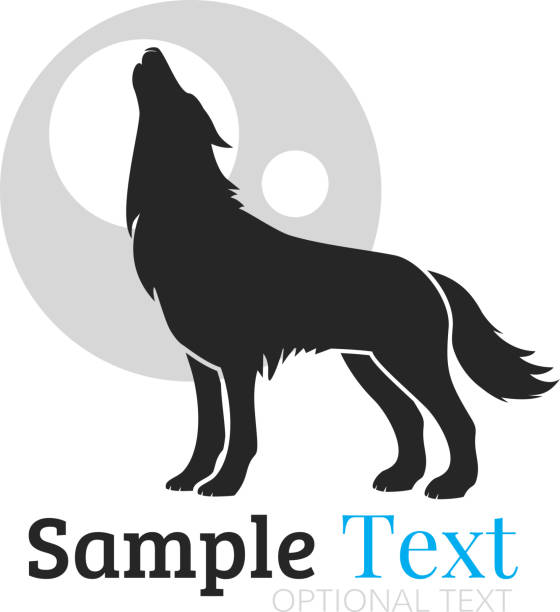 Wolf Wolf silhouette of a howling coyote stock illustrations