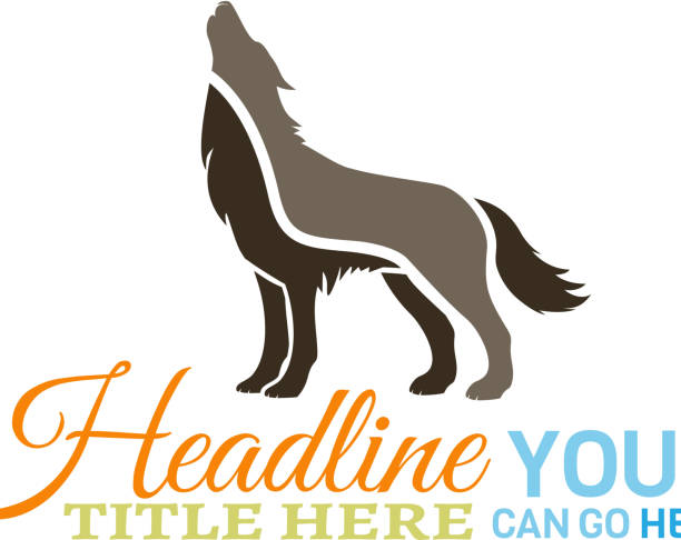 Wolf Wolf Howling. silhouette of a howling coyote stock illustrations