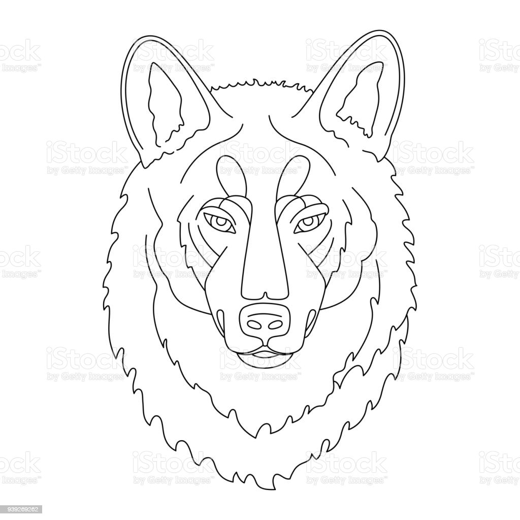 Wolf Stock Vector Art & More Images of Animal 939269262   iStock
