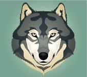 Head of wolf.