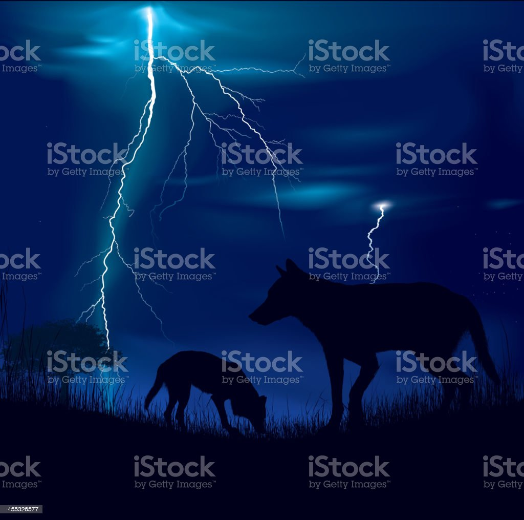 Wolfs on a storm royalty-free stock vector art