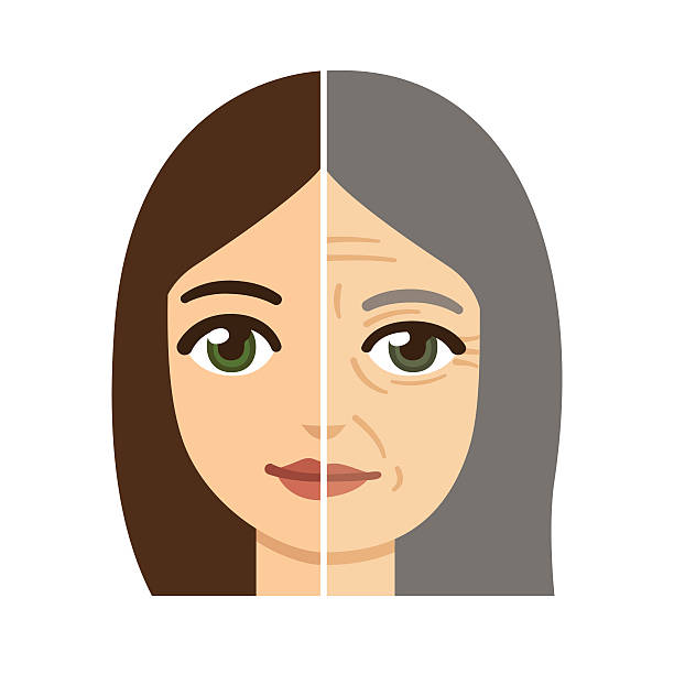 Woman aging illustration vector art illustration