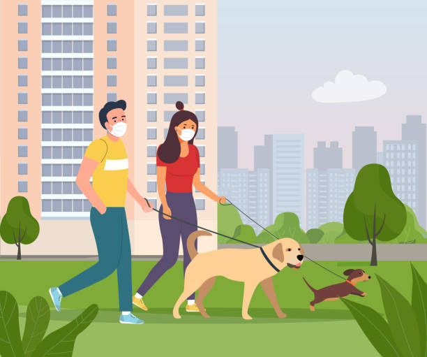 Woman and man wearing face masks walking with a dogs in the city park. Vector flat style illustration vector art illustration