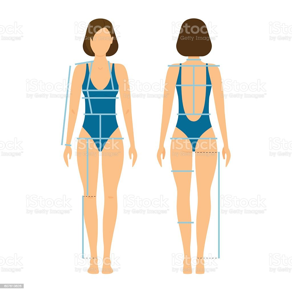 Woman Body Front and Back for Measurement. Vector vector art illustration