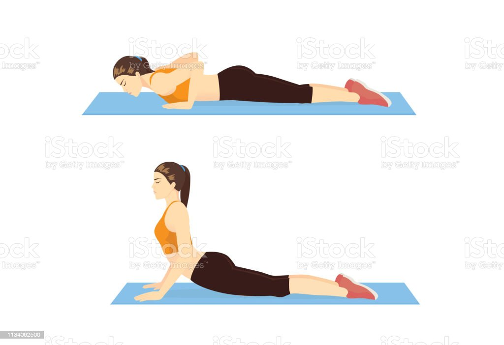 Woman Doing Cobra Stretch Exercise On Blue Mat In 2 Step Stock Illustration  - Download Image Now