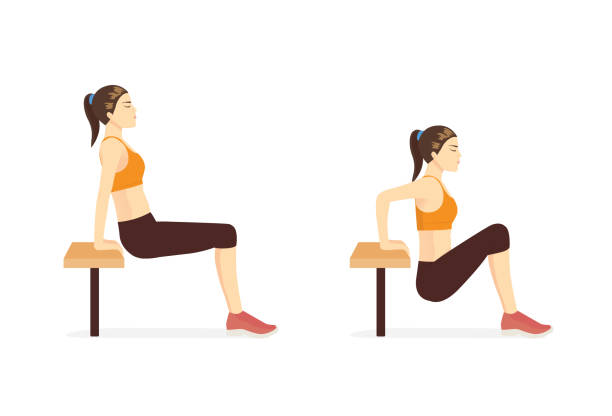 Woman doing Hip Dip Fitness with bench in 2 steps for exercise guide. Fit triceps brach ii muscle. vector art illustration