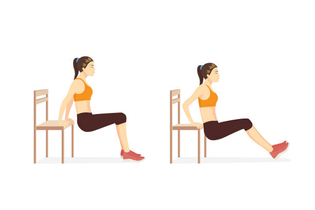 Woman doing Triceps Dips with bench in 2 step for exercise guide. vector art illustration