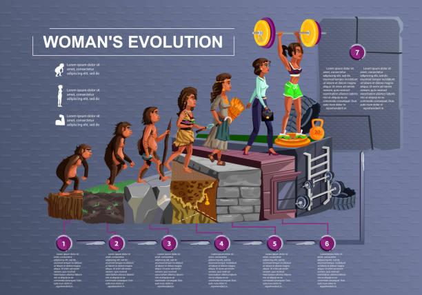Mujer evolución línea de tiempo vector Cartoon - ilustración de arte vectorial