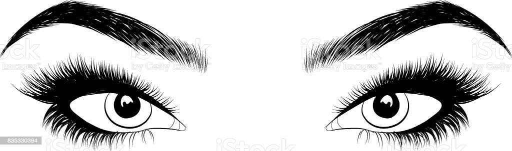 Woman eye with perfectly shaped eyebrows and full lashes vector art illustration