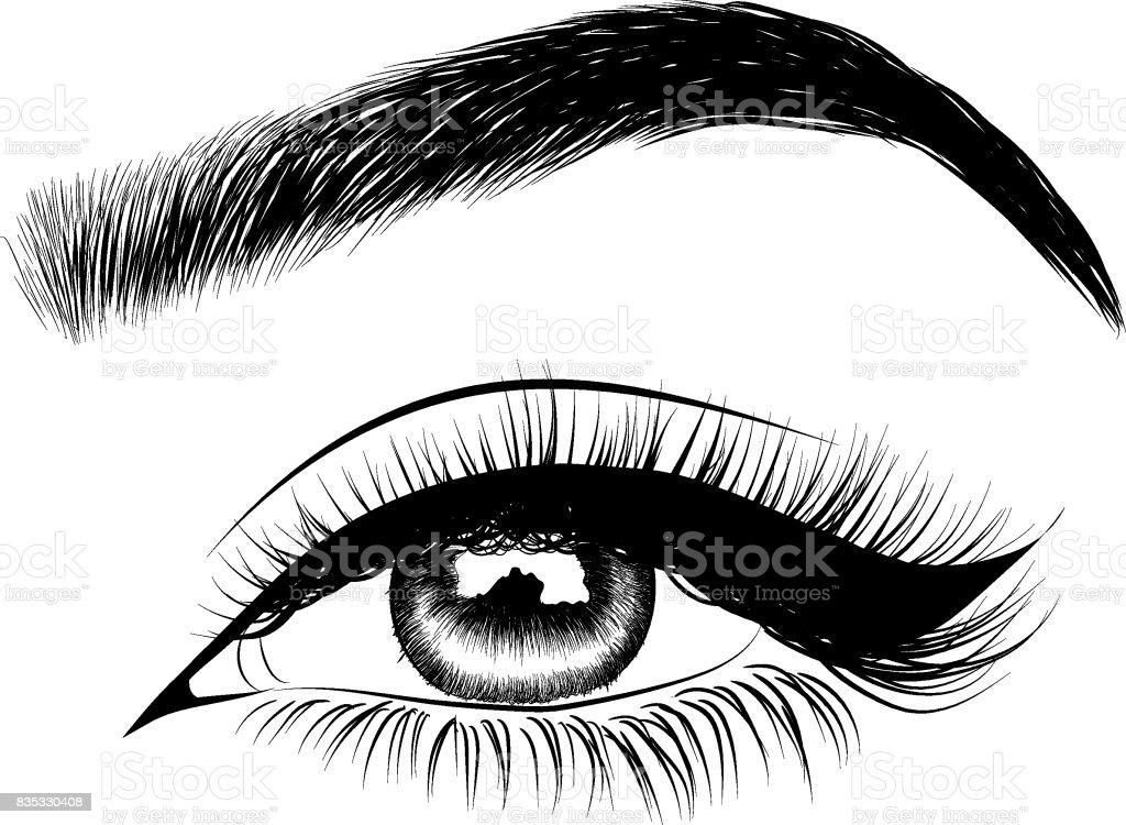 Frau Auge mit perfekt geformte Augenbrauen und Wimpern – Vektorgrafik