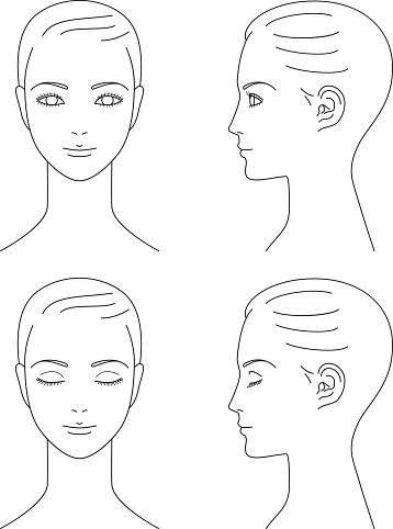woman face. Front and profile.