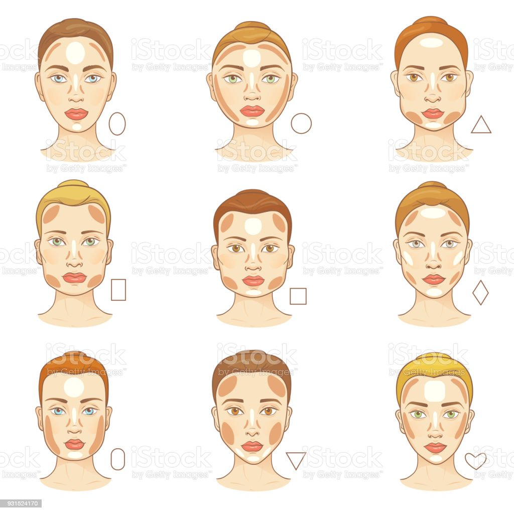 Stupendous Woman Face Type Vector Female Character Portrait With Facial Schematic Wiring Diagrams Amerangerunnerswayorg