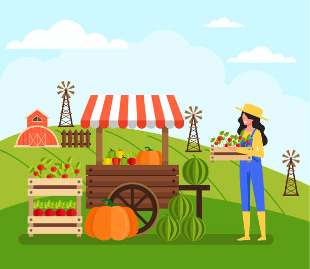 illustrazioni stock, clip art, cartoni animati e icone di tendenza di woman farmer worker character sell vegetable. farming agriculture concept. vector flat cartoon graphic design illustration - mercato frutta donna