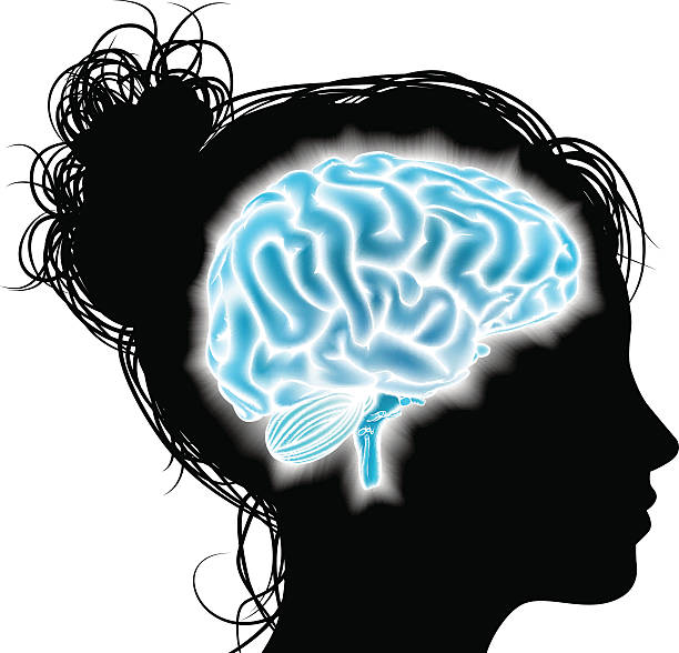 Woman glowing brain concept A womans head in silhouette with a glowing brain. Concept for mental, psychological development, brain development, mental stimulation,  learning and education or other medical theme child prodigy stock illustrations