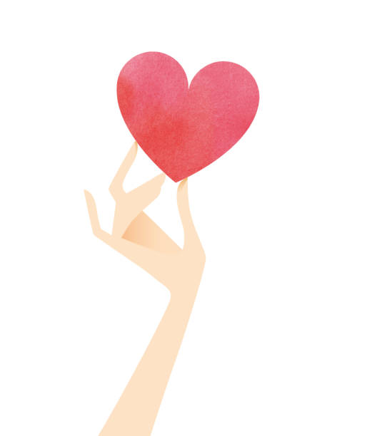 Woman hand holding a heart vector art illustration