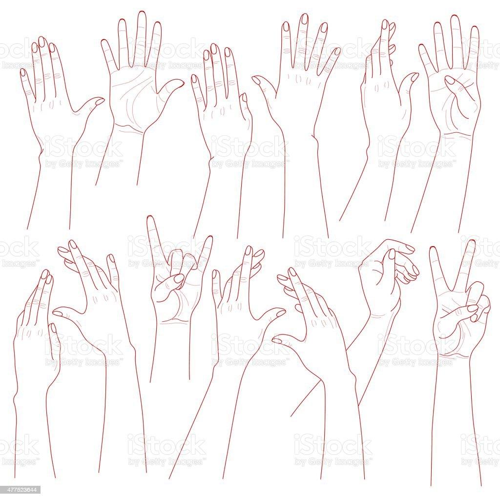 Woman Hands Set vector art illustration