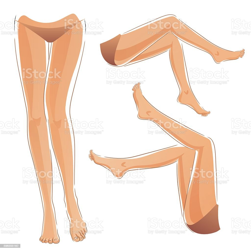Woman legs set royalty-free woman legs set stock vector art & more images of adult