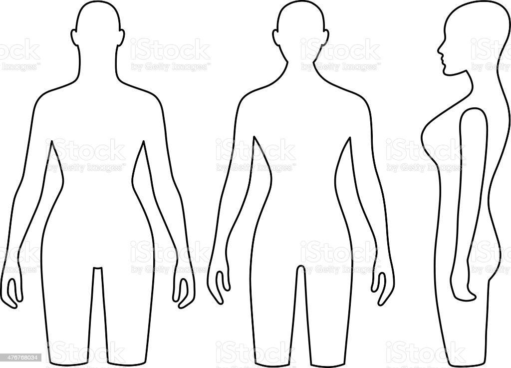 Woman mannequin outlined torso vector art illustration